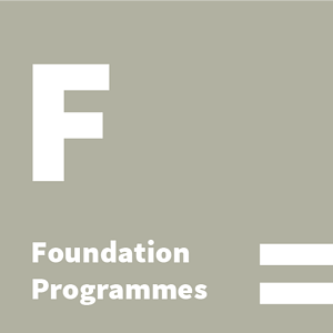 foundation-icon.png